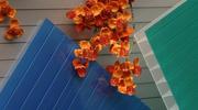 Акция!!! - Сотовый поликарбонат Polygal PolyShade Blue(Израиль) 10 мм.