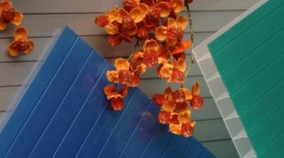 Акция!!! - Сотовый поликарбонат Polygal PolyShade Blue(Израиль) 10 мм. - main