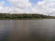 Участок под застройку с. Зазимье 25 соток в 50 метрах от речки Десна - foto 10