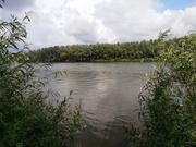 Участок под застройку с. Зазимье 25 соток в 50 метрах от речки Десна - foto 12