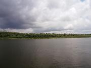 Участок под застройку с. Зазимье 25 соток в 50 метрах от речки Десна - foto 17